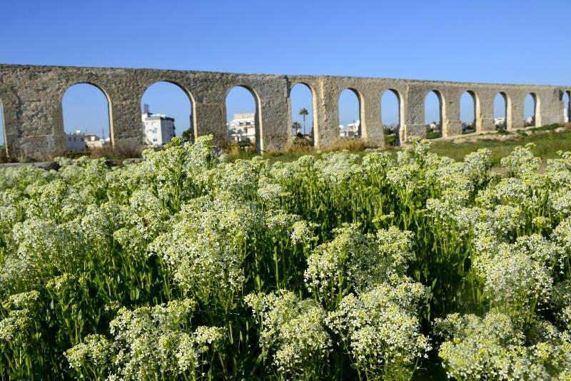 Архитектура старого мост-водовода стоковое фото rf