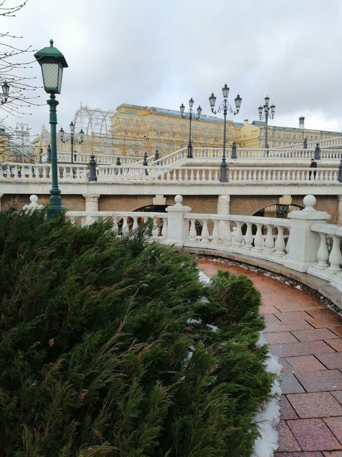 Архитектурный ансамбль и зеленые кусты стоковое изображение