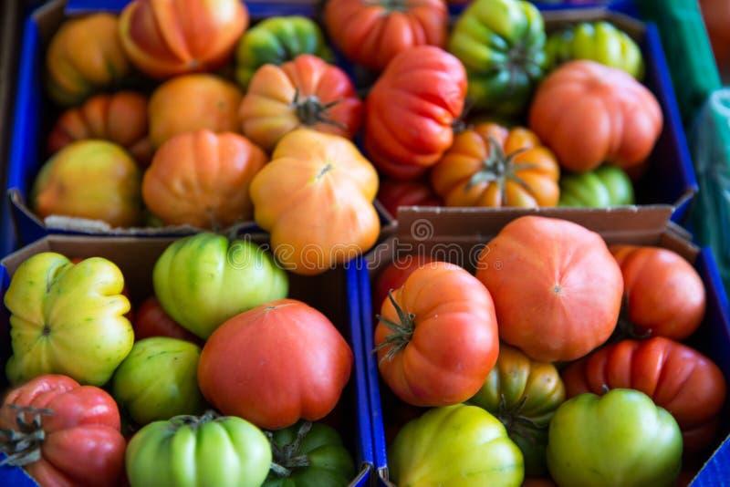 Ассортимент красных и зеленых томатов на рынке Органический свежий ve стоковое изображение rf