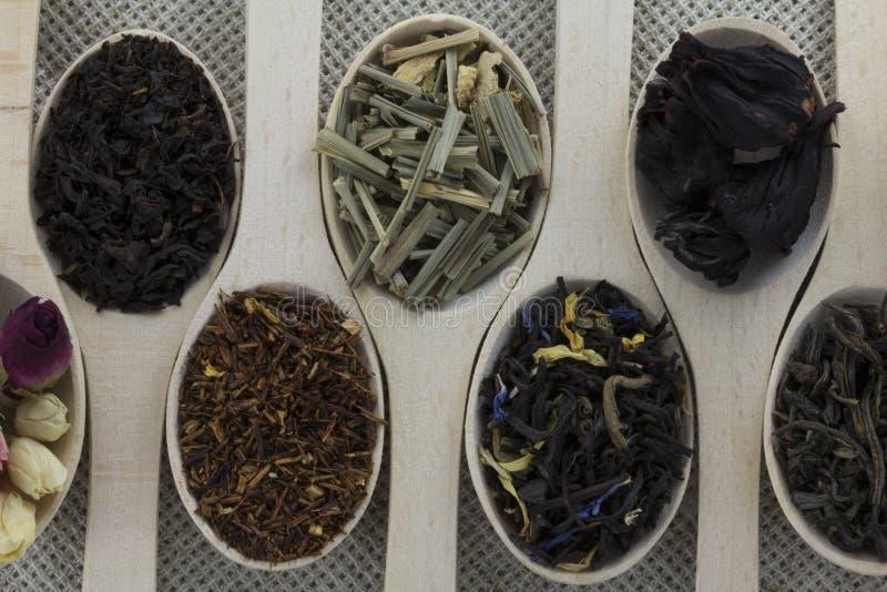 Ассортимент разных видов чая в деревянной ложке стоковое изображение