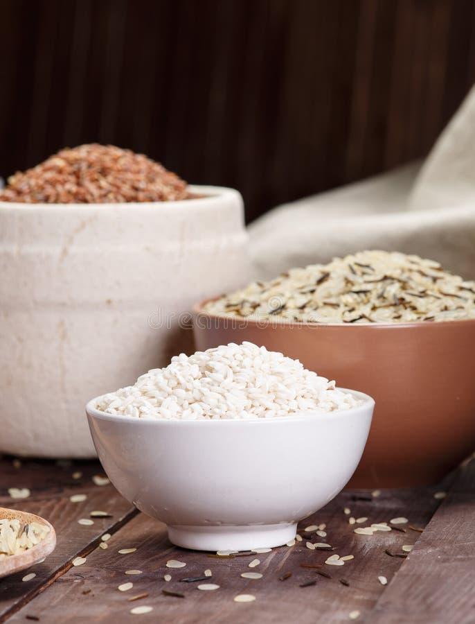 Ассортимент риса стоковая фотография