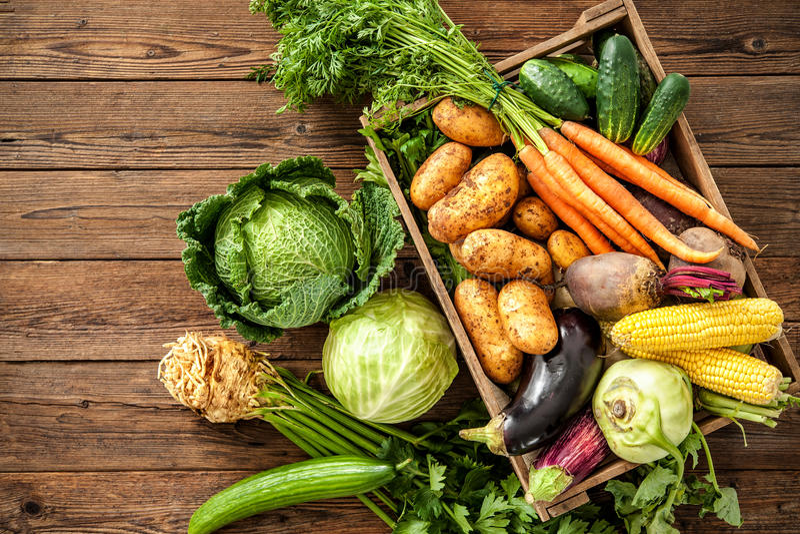 Ассортимент свежих овощей стоковое изображение
