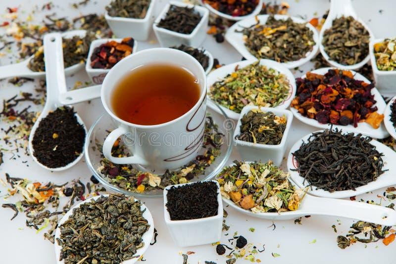 Ассортимент сухого чая Различные виды чая изолированные на белизне Различные виды листьев чая Состав чая с различным видом o стоковое изображение