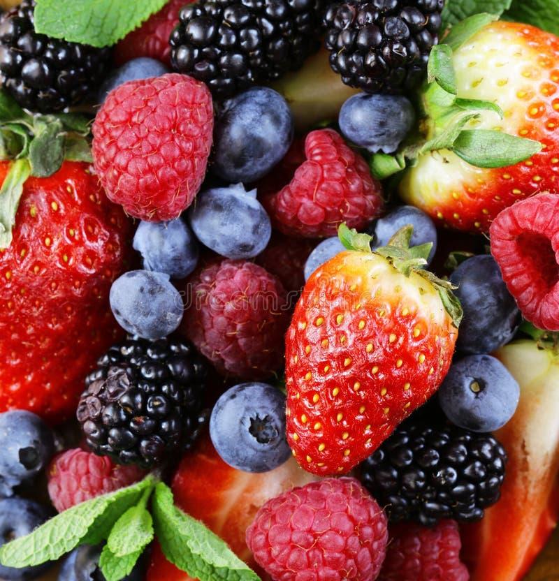 Ассортимент ягоды - поленики, ежевики, клубники, голубика стоковое изображение