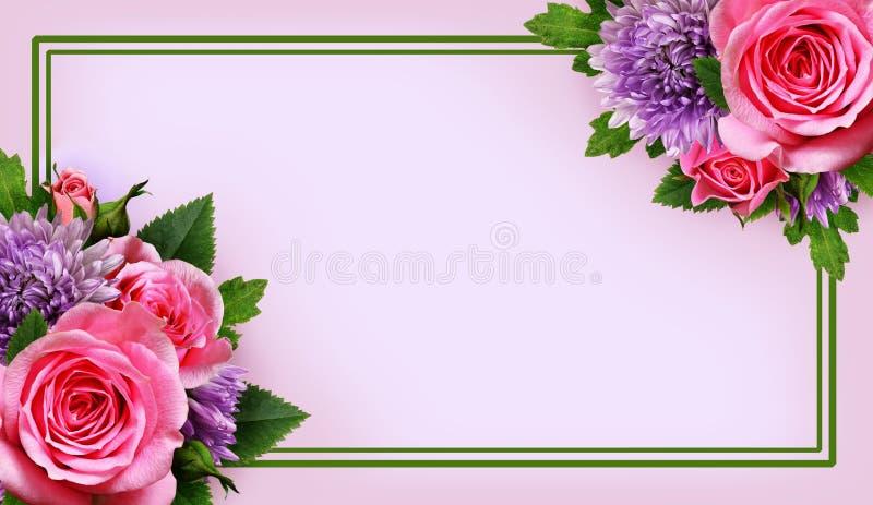 Астра и розовое расположение цветков и рамка стоковое фото rf