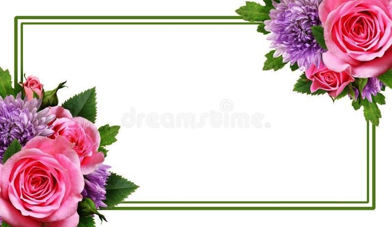 Астра и розовое расположение цветков и рамка стоковое изображение rf