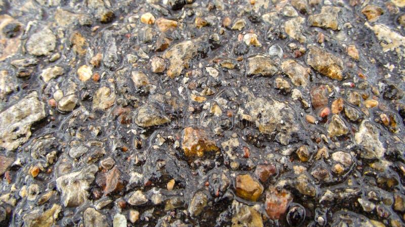 асфальт влажный стоковое изображение rf