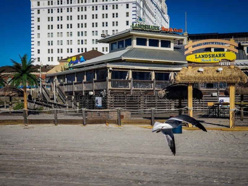 Атлантик-Сити, NJ стоковые изображения