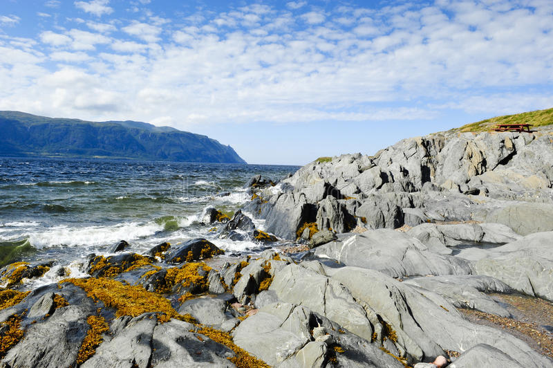атлантический океан newfoundland стоковая фотография rf