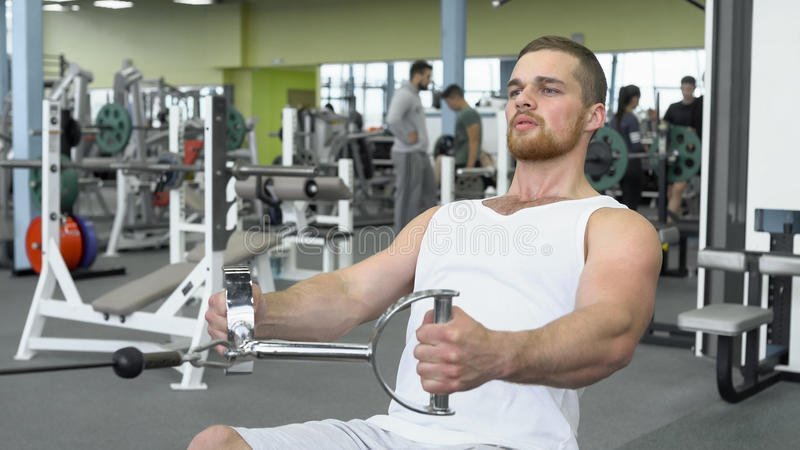 Атлетический молодой человек работая на приборе блока Портрет сильного атлетического человека на тренировке спортзала стоковое изображение rf