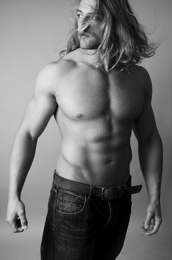 атлетический мужчина строителя тела сексуальный стоковые фотографии rf