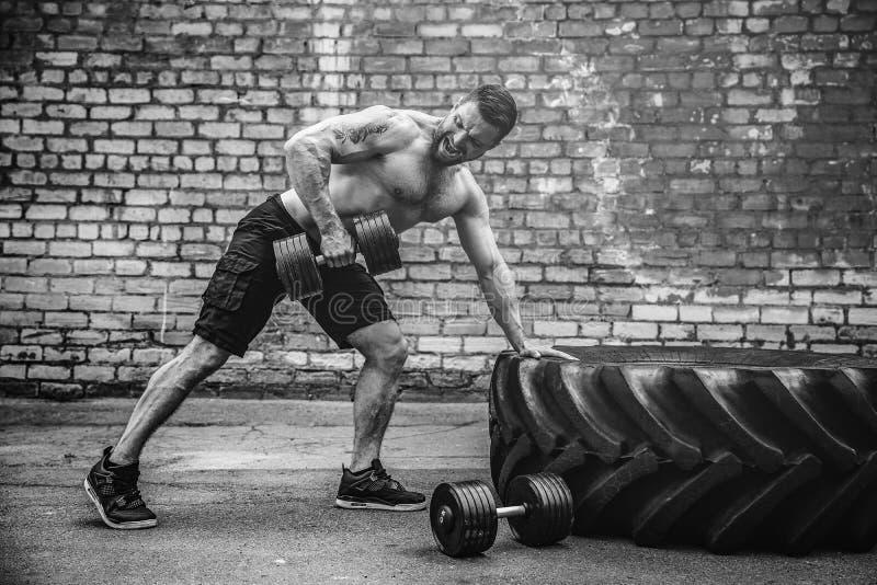 Атлетический человек разрабатывая с гантелью Прочность и мотивировка Тренировка для мышц задней части стоковое изображение