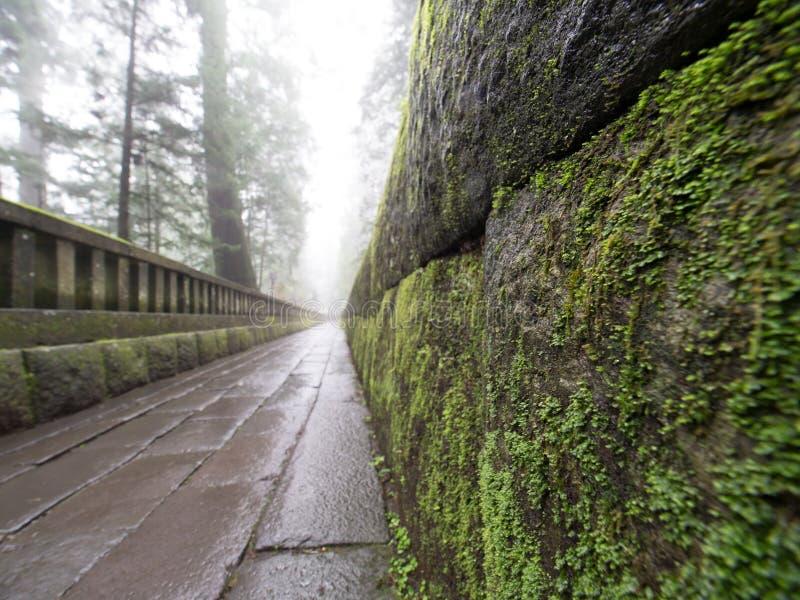 Download Атмосферическая тропа виска Стоковое Фото - изображение насчитывающей путь, тропа: 81805170