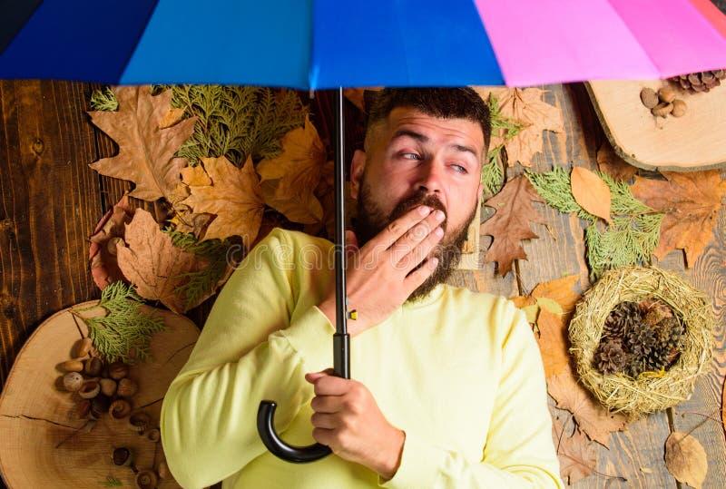 Атрибуты атмосферы падения Битник с усиком бороды надеется зонтик ненастным владением погоды красочный Сонное человека бородатое стоковые фотографии rf