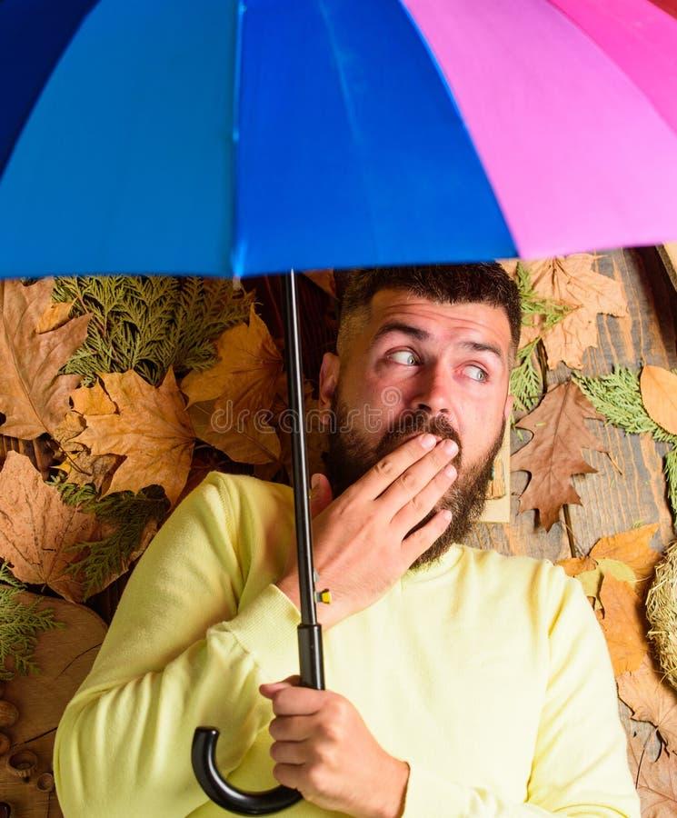 Атрибуты атмосферы падения Битник с усиком бороды надеется зонтик ненастным владением погоды красочный Положение человека бородат стоковое изображение