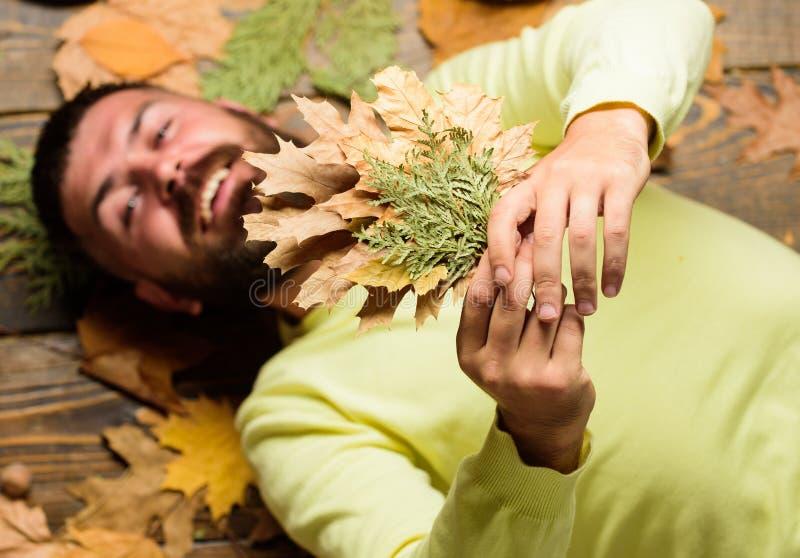 Атрибуты атмосферы падения Концепция сезона падения и осени Сторона человека бородатая усмехаясь кладет на деревянную предпосылку стоковое фото