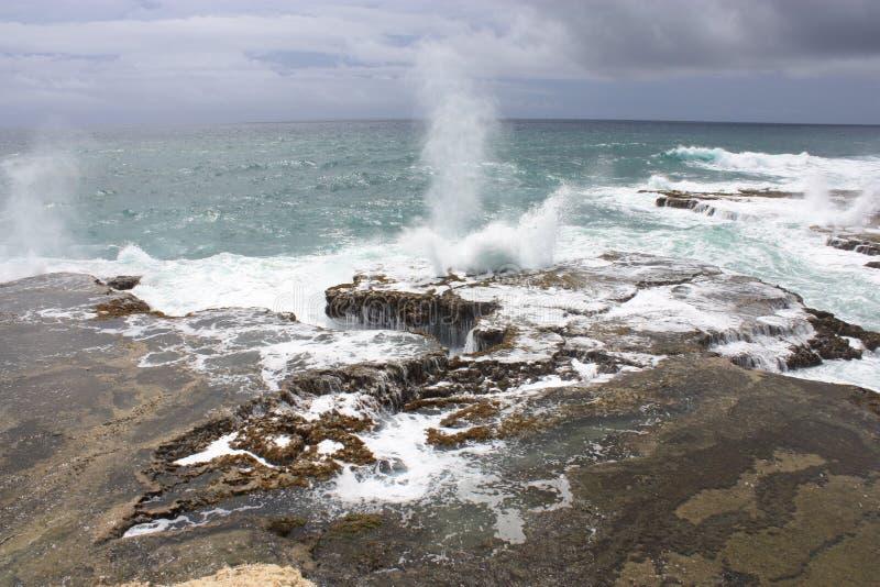 Атлантическое побережье от Барбадос стоковые фотографии rf