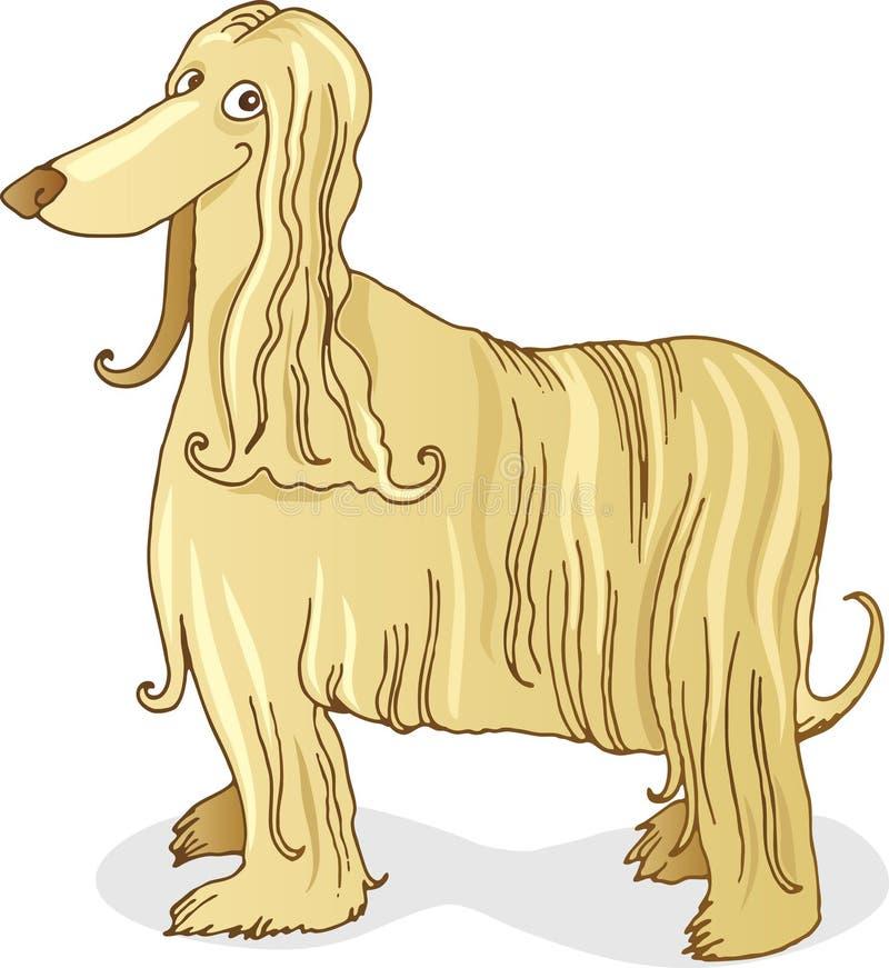 Download афганская гончая собаки иллюстрация вектора. иллюстрации насчитывающей разведенными - 6850534