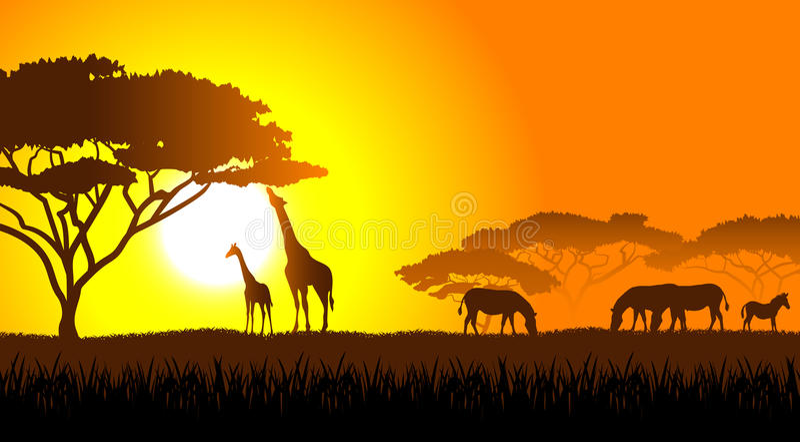 Африканская саванна ландшафт вечера иллюстрация вектора