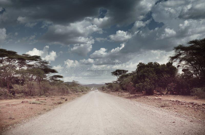 Африканская экспедиция стоковое фото rf