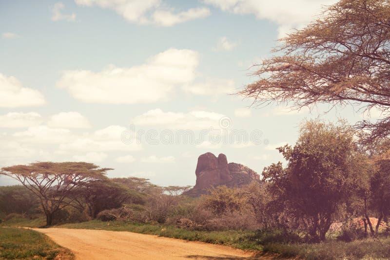 Африканская экспедиция стоковые фотографии rf