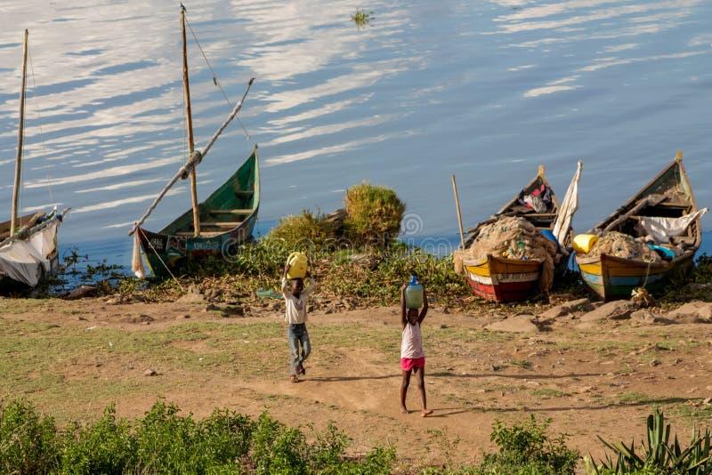 Африканские дети приносят воду от Lake Victoria стоковые фото