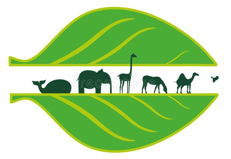 африканские листья animasl иллюстрация штока