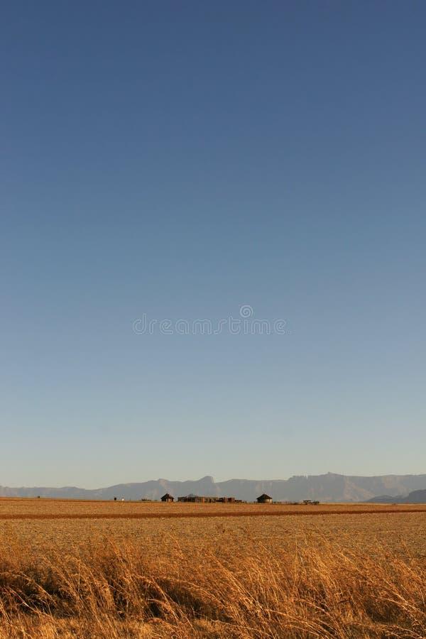 африканский горизонт стоковое фото