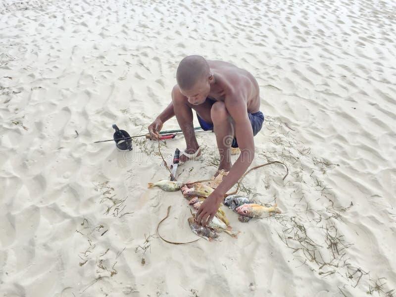 Африканский рыболов стоковое изображение rf