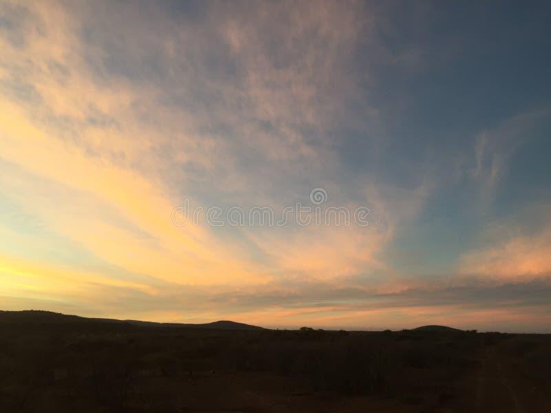 африканский южный заход солнца стоковые изображения rf