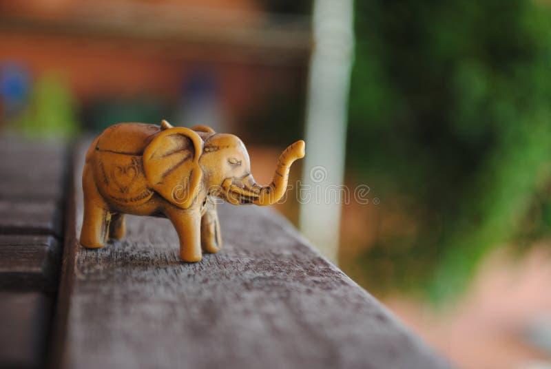 Африканца слон удачливейше стоковое фото rf
