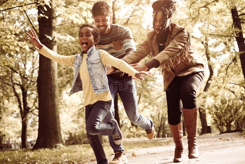 Афро-американская семья в луге стоковая фотография rf