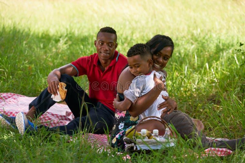 Афро-американская семья при ребенок матери отца обнимая в парке стоковое фото
