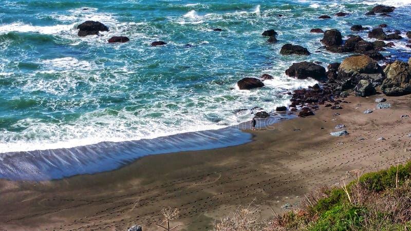 Ах, к рыбам в океане от берега нирвана стоковые фото