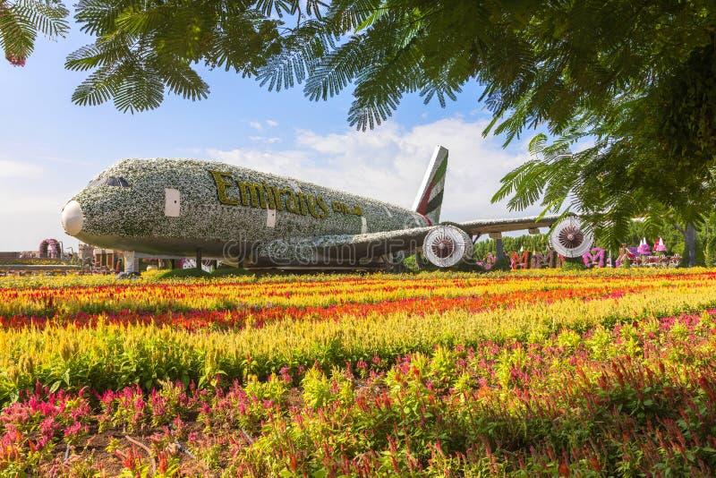 Аэробус A380 эмиратов сделал из цветков на саде чуда в Дубай стоковые изображения rf