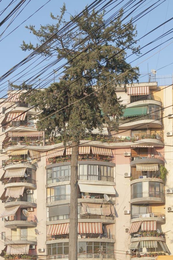 Албания, Тирана, спутанные провода телекоммуникаций стоковое изображение rf