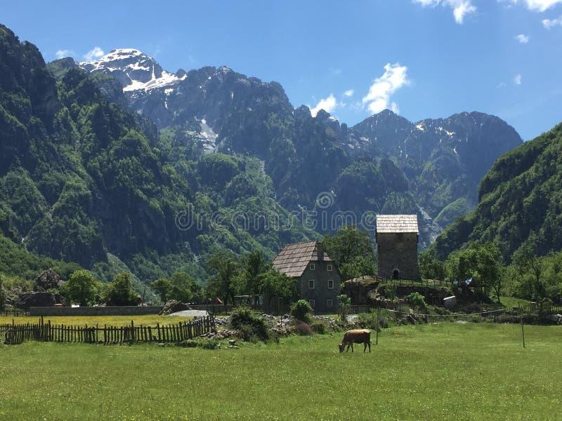 Албанские горные вершины как раз захватывающи! стоковое фото rf