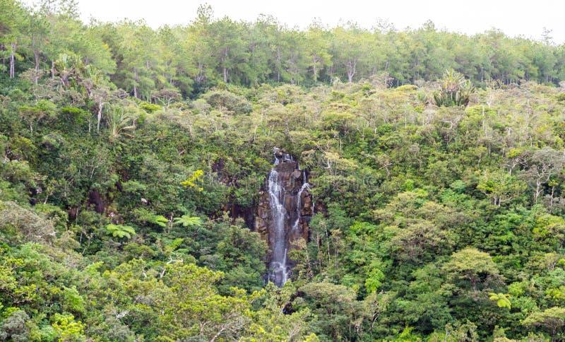 Александра падает водопад в национальном парке Маврикии ущелий стоковые изображения