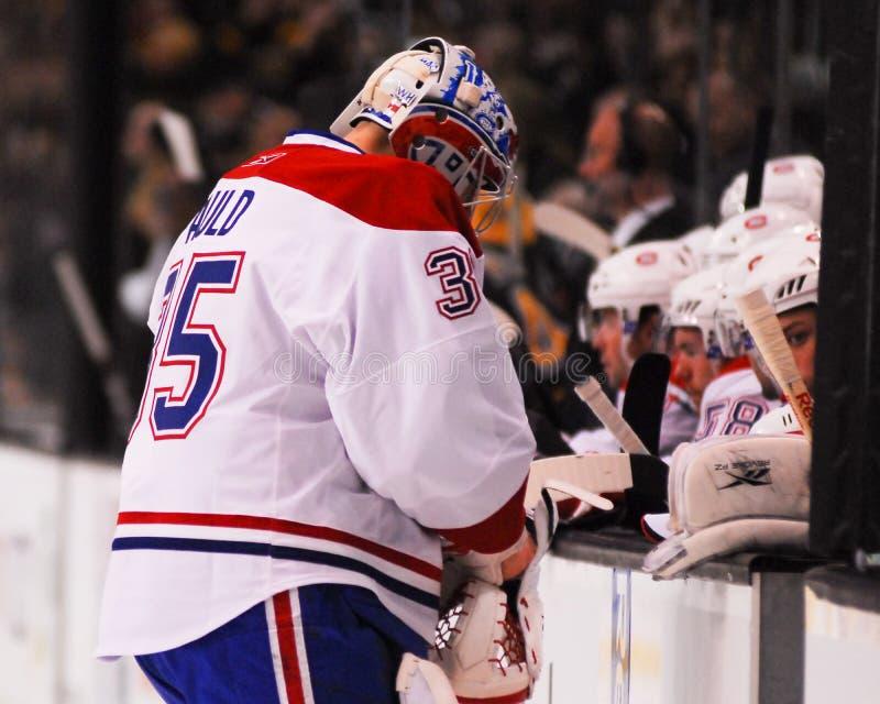 Алекс старый, Монреаль Canadiens стоковые фотографии rf