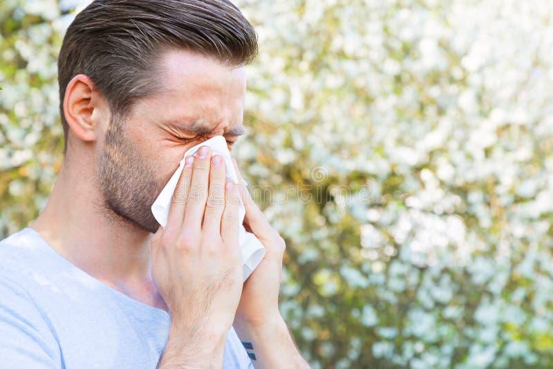 Аллергия, весна, человек стоковые изображения rf