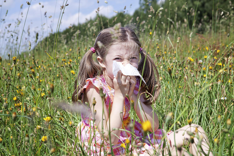 Аллергия весны стоковое изображение rf