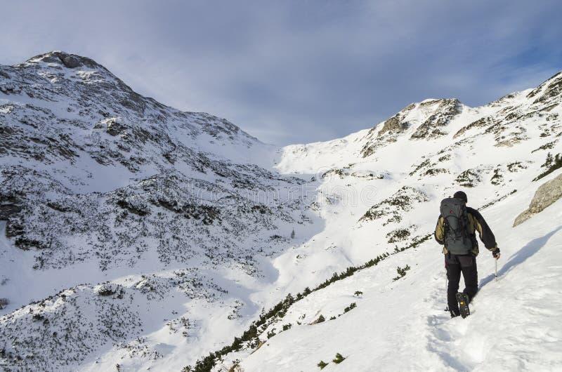 Альпинист путешествуя через снег в Джулиане Альпах стоковое изображение rf
