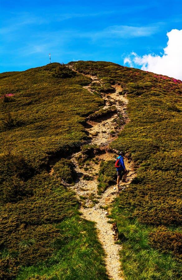 Download альпинист стоковое изображение. изображение насчитывающей трек - 41657245