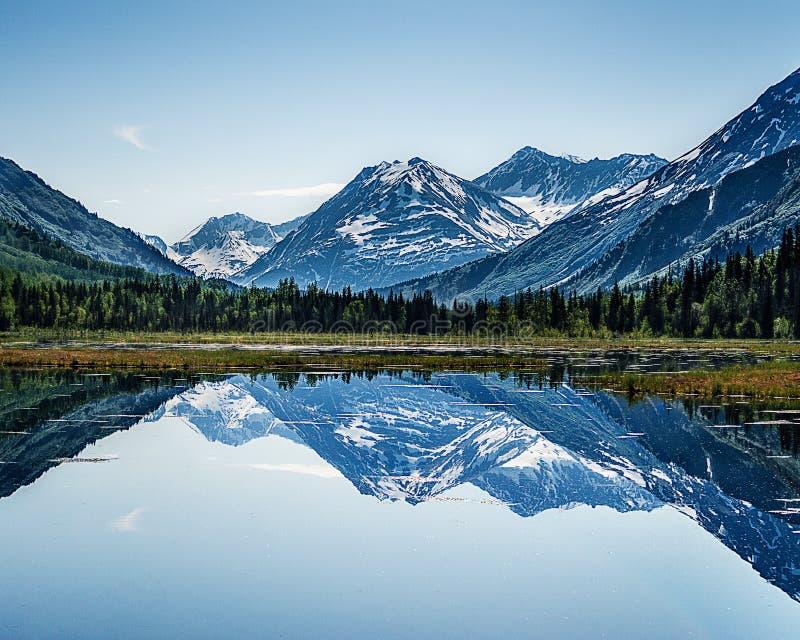 Аляскское лето стоковые изображения