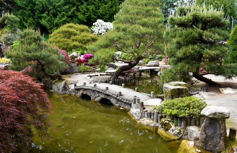 ? weinig brug in de botanische tuin royalty-vrije stock fotografie