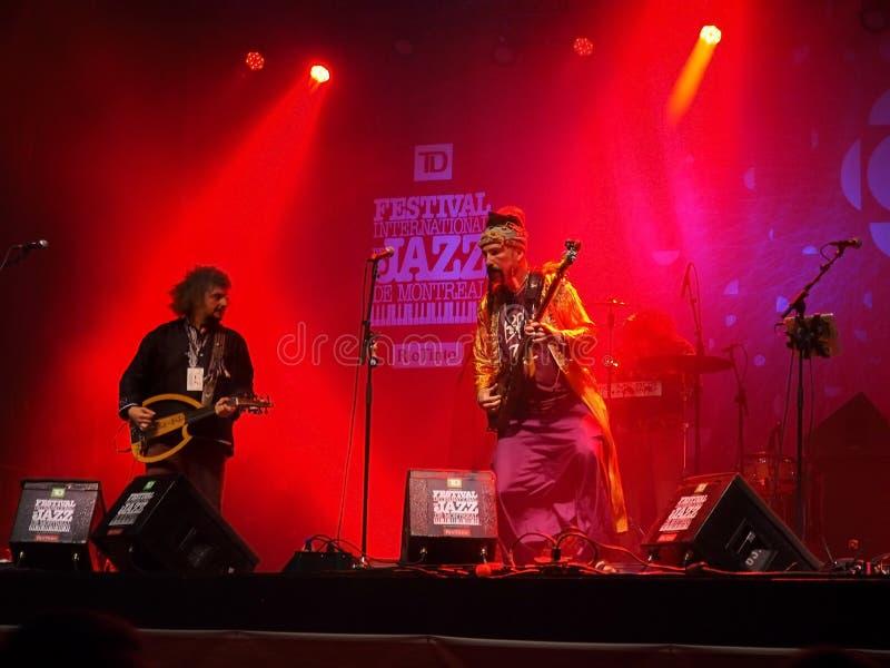 Баба Zula в концерте стоковое изображение rf