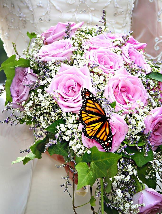 бабочка букета стоковая фотография rf