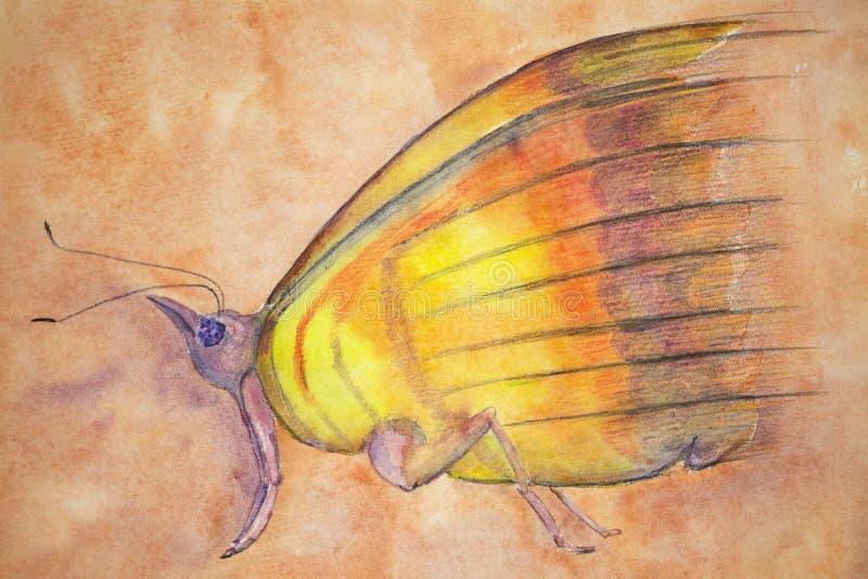 Бабочка фантазии на предпосылке salmon пинка бесплатная иллюстрация