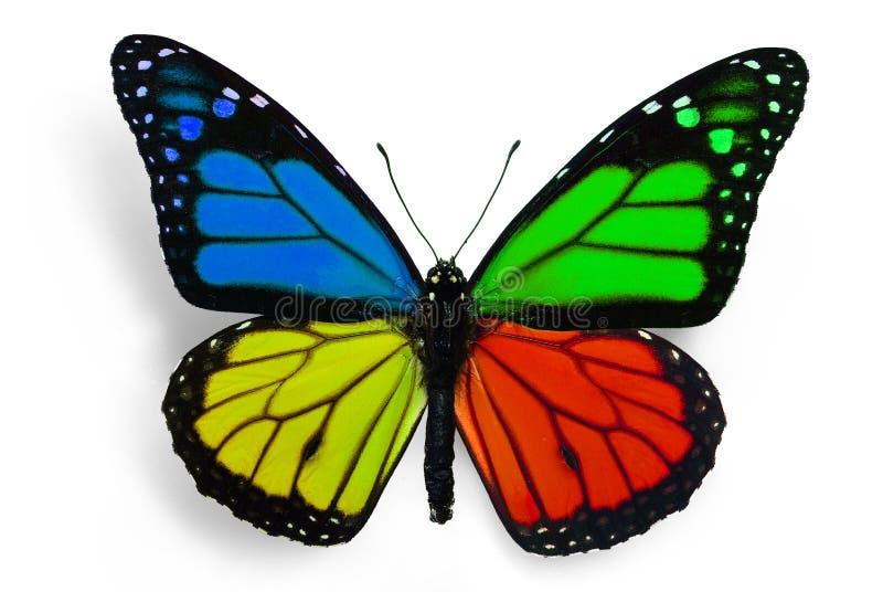 Бабочка фантазии иллюстрация штока