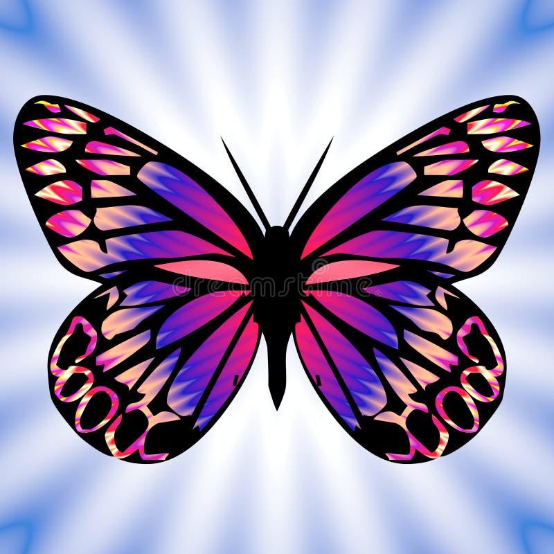 бабочка 8 бесплатная иллюстрация